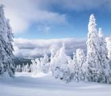 Сезонный бизнес зимой