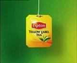 История успеха Lipton